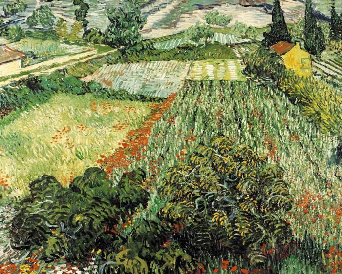 Feld mit Mohnblumen by Vincent Van Gogh