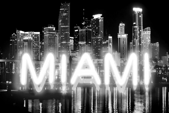 Neon Miami WB by Hailey Carr