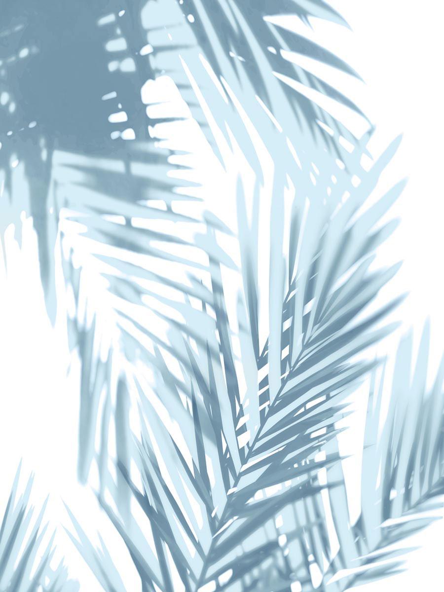 Palm Shadows Aqua II by Melonie Miller