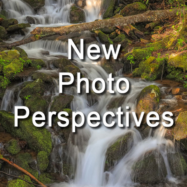Photo Perspectives